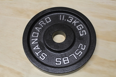 25 lb Cast Iron Weight Plate - Standard