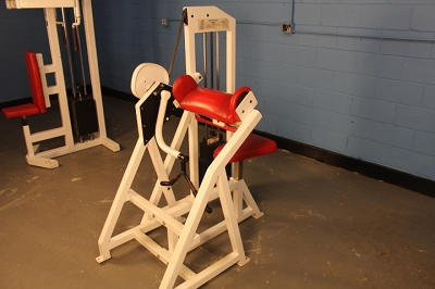 Bodymasters Arm Curl machine - Used