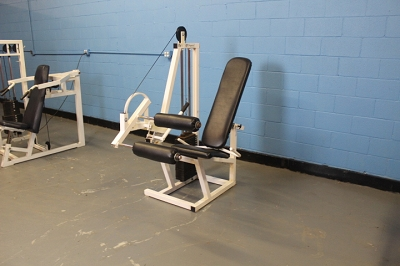 Conquest Leg Curl - Used