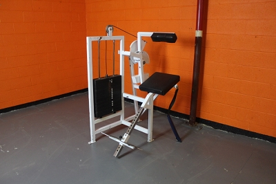 Cybex Back Extension - Used