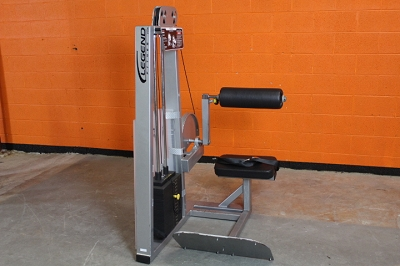 Legend Back Extension Machine - Used