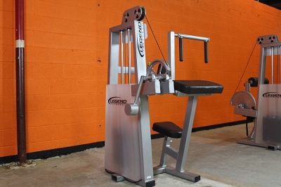 Legend Triceps Extension Machine - Used