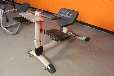 Lifespan Stretch Trainer - Used