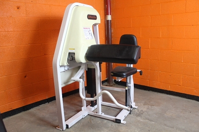 Nautilis Preacher Curl Machine - Used
