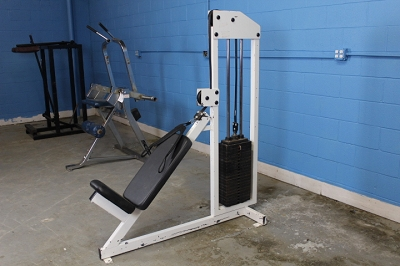 Over head Triceps extension machine - Used