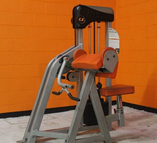 Body Masters CX 410 Arm Curl - Used