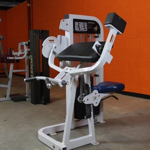 Arm Curl - Life Fitness Pro 2 - Used