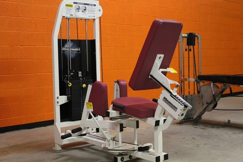 Magnum Adductor (inner thigh) - used
