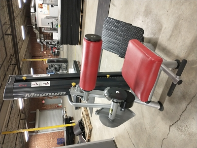 Magnum Back and Ab Machine - Used