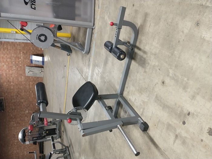 X Mark Fitness Back Extension - Used